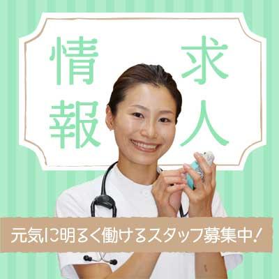 小島動物病院アニマルウェルネスセンター|求人情報