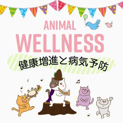 小島動物病院アニマルウェルネスセンター|ウェルネスについて