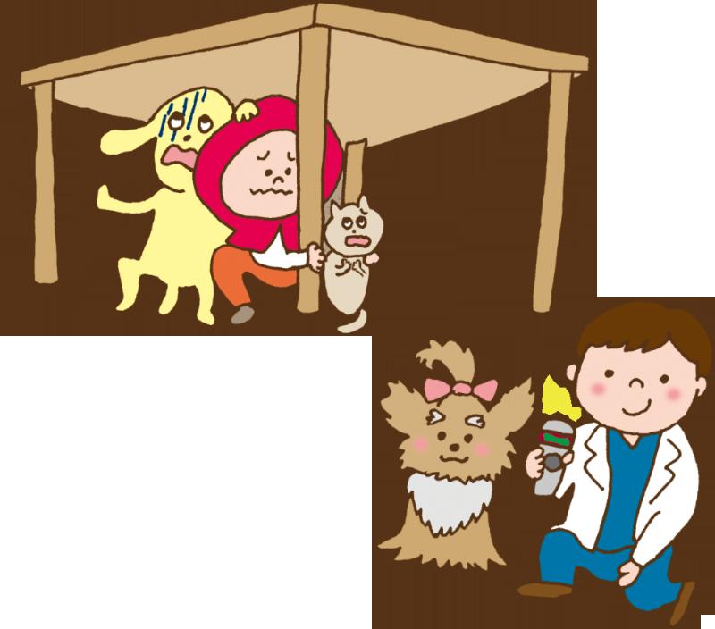 小島動物病院アニマルウェルネスセンター|マイクロチップ